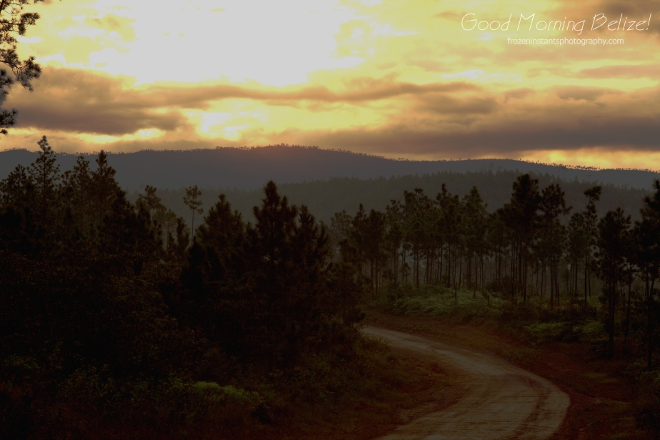 Early morning Mountain Pine Ridge road